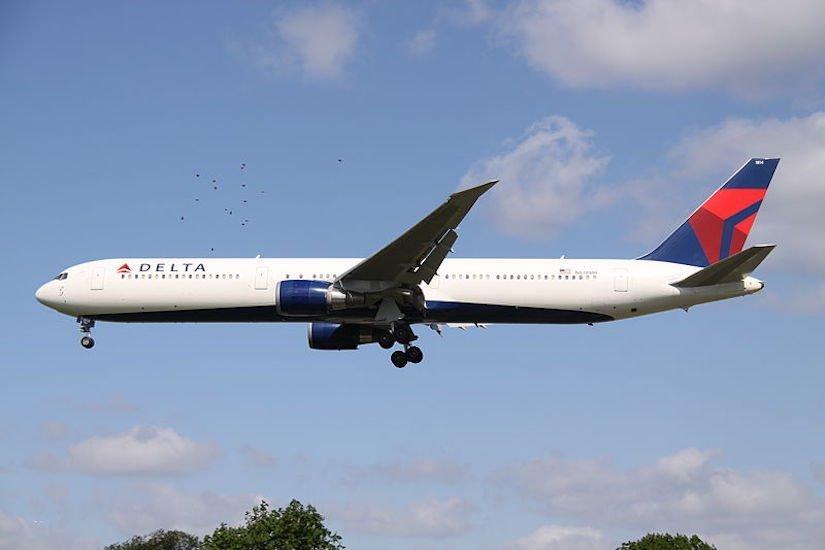 Delta Releases Quarter Two Earnings Reports: Profit Down Despite Unit Revenue Increase
