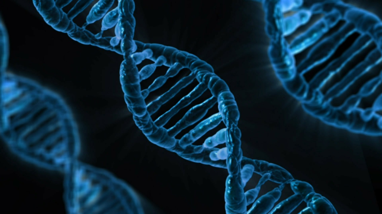 Malicious code can now jump from DNA to computers