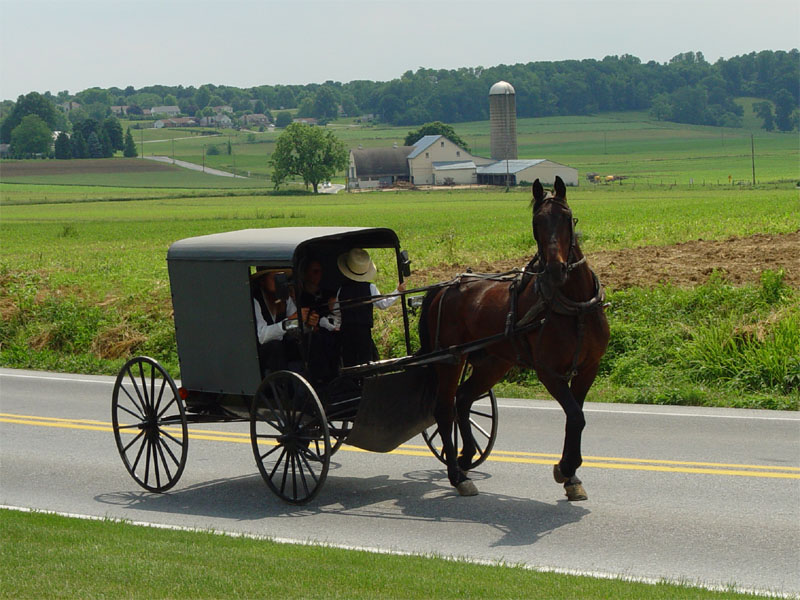 More and more Amish businesses are using technology