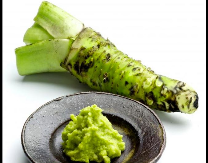 Wasabi stem and paste