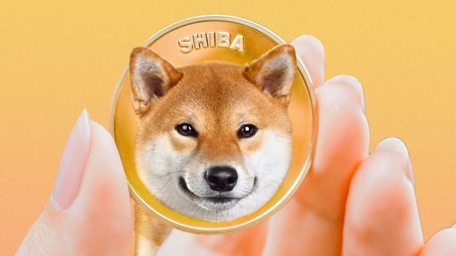 https://www.fastcompany.com/90684269/shib-coin-why-is-the-shiba-inu-cryptocurrency-surging